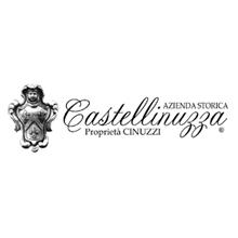 Logo-azienda-Castellinuzza