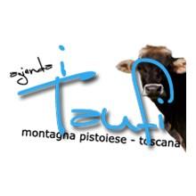 Edit-Logo-Taufi