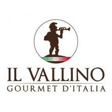 Logo-Il-Vallino