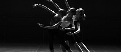 danza in fiera.jpg