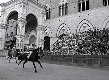 Palio di Siena.jpg