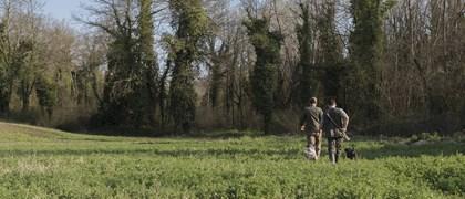 Searching Tuscan Truffle