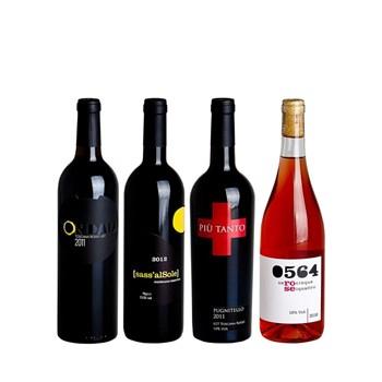 composizione-vini-rossi-rose-tenuta-tondaia