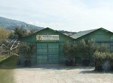 Azienda Agricola Vivai Bonelli