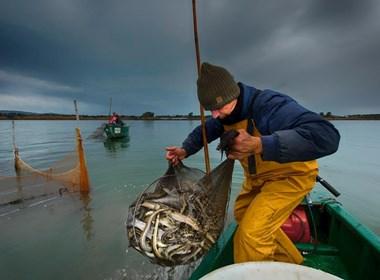 Pesca-tradizionale-della-Laguna-di-Orbetello
