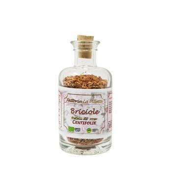 briciole di rosa centifolia - la villetta