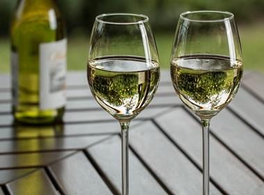 vini-valdicornia